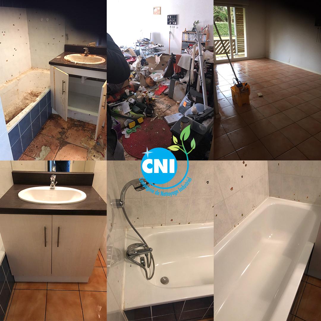Débarras nettoyage désinfection