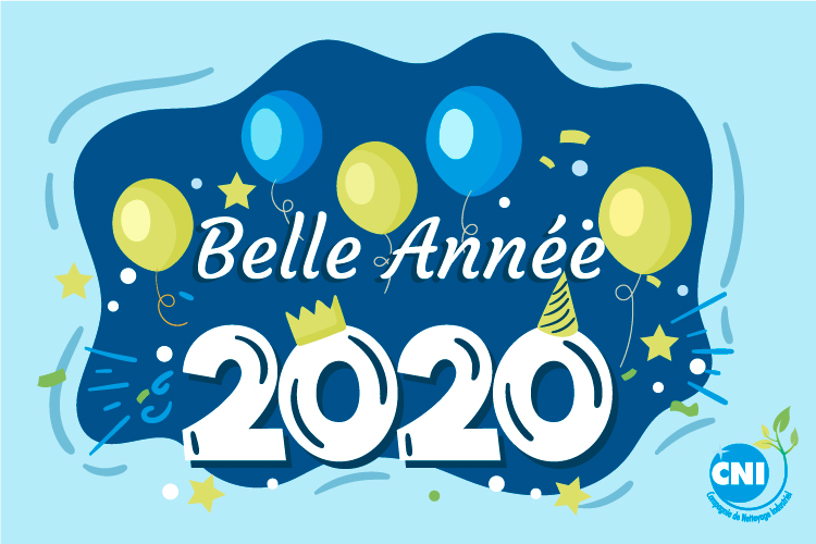 cni-2020